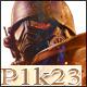 P1k23