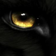 Análise de Wolfs Black sobre Choplifter HD