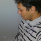 ale_pegasus
