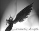 Análise de Lionardy-Angel sobre Syberia