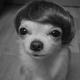 CachorroQuente17