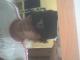 ramon13