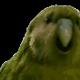 Análise de OzzY_x85 sobre Counter-Strike